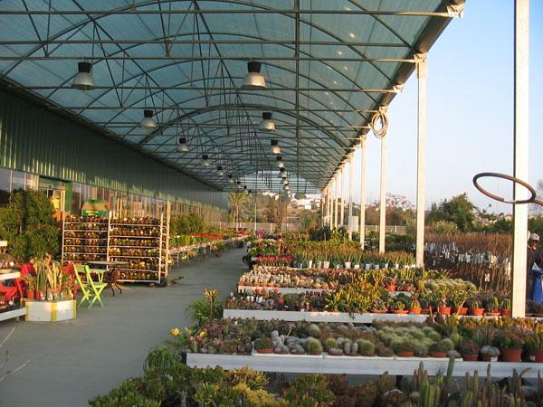 Proyecto y ejecuci n de centro de jardiner a y vivero de - Centros de jardineria madrid ...